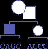 image of cagc-accg