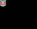 WA University St. Louis logo